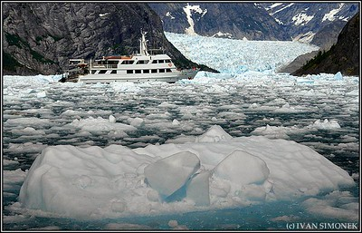 """NAUTILUS EXPLORER#1"",LeConte Bay,Alaska,USA.LeConte glacier can be seen at the upper right corner."