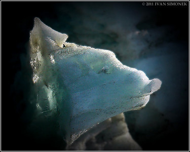 """ICE DOG"",a natural iceberg formation,LeConte Bay,Alaska,USA."