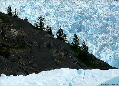 """SURROUNDED"",LeConte glacier,Alaska,USA."