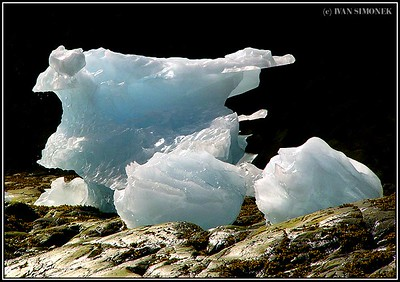 """ON THE ROCKS"", icebergs at LeConte Bay, Alaska, USA."