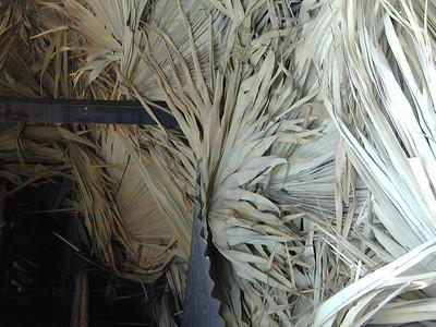 palm_leaf_storage