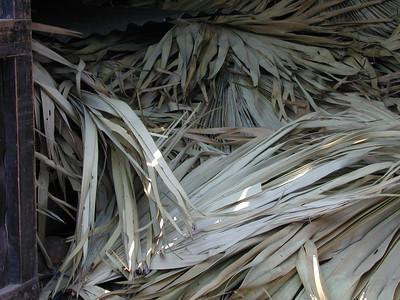 palm_leaf_storage_2