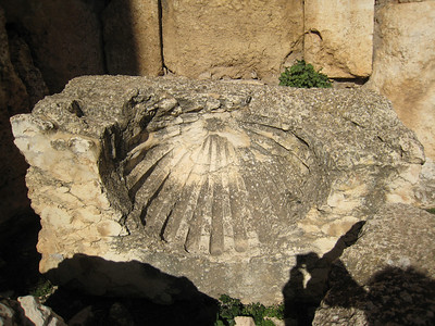 A shell design similar to one I photograhed in Jerash, Jordan.