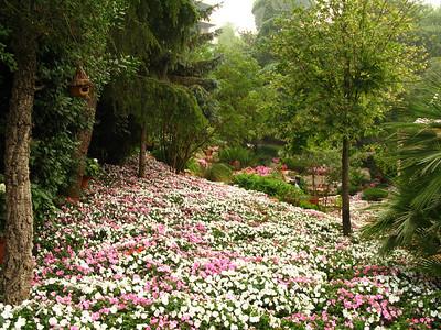 Landscaping at the mountain-top Mounir Restaurant, Broumana, Lebanon.