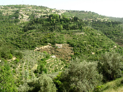 Mountain view of stepped terraces on Jebal Lebnan, Lebanon.