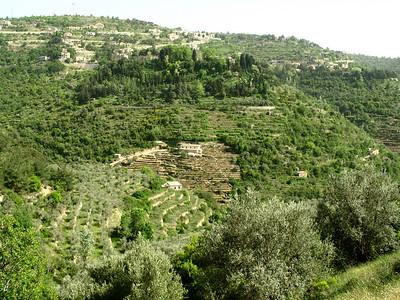 Mountain view of stepped terraces on Jebal Lebnan, Lebanon.