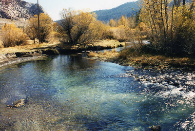 10/22/02 Lee Vining Creek at Aspen Campground (off Power Plant Road from Hwy 120/Tioga Pass). Mono County, CA