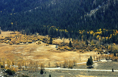 10/22/02 View of Lee Vining Creek from Hwy 120/Tioga Pass. Mono County, CA