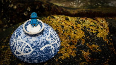 Beach House:  Found a little blue plastic toy dude on the beach...there is lots of stuff lying around.  He, along with the rice bowl, became my muse for the day.