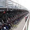 Got bikes? Bikes rule the road here- cars may stop for you, bikes will not!