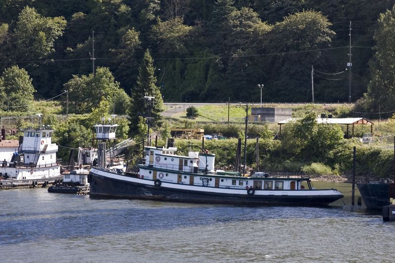 Marine transportation: Large ocean-going tug Galini, anchored in Lower Columbia River near Pacific Ocean. 2005.