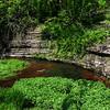 McConnell Springs<br /> Boils Spring
