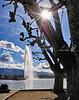 _DSC2853-Lake Geneve