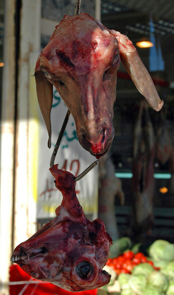 Benghazi: butcher shop