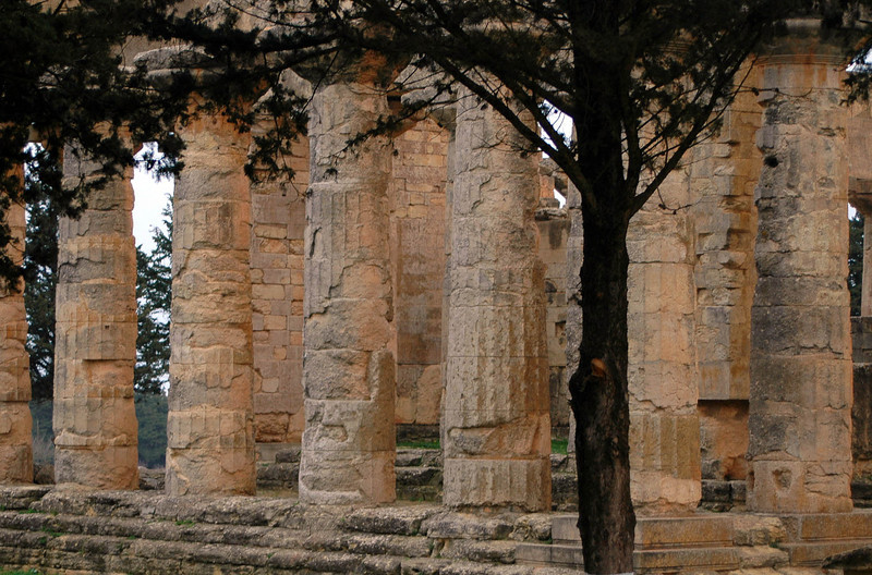 Cyrene: Temple of Zeus; Greek, 5th century B.C. The temple has been undergoing a years-long restoration by Italian archeologists.
