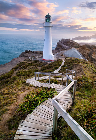 Follow the Light - Castlepoint Lighthouse