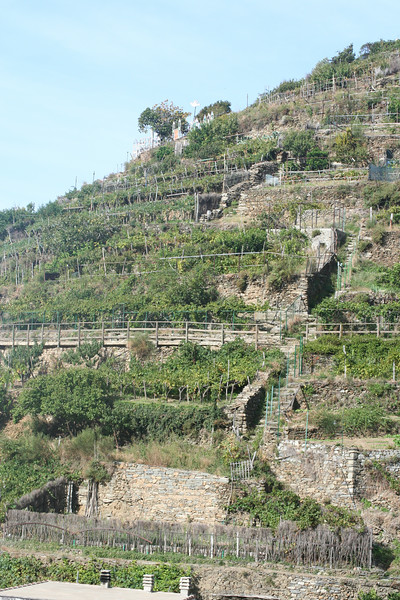 More impressive terraces.