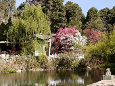 Shuhe - The town spring