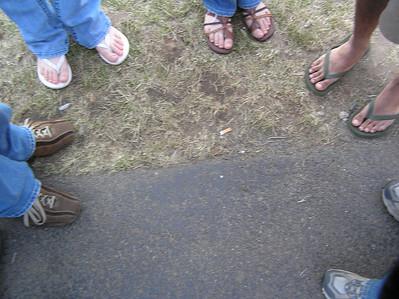 Lilac Festival 2007