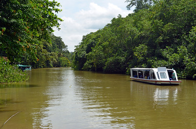 River Craft tour the Jungles