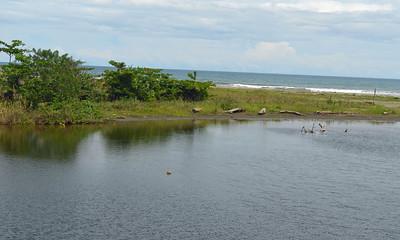 Coastal Road of Limon