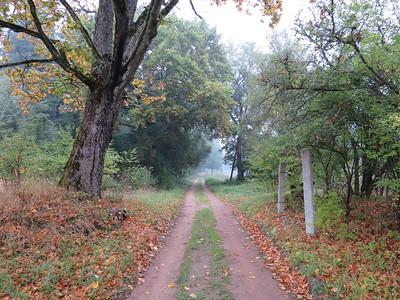 Wandelroute naar Viesvile regionaal natuurreservaat