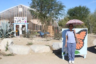 11/13/05 Butterflies Alive! Exhibit. The Living Desert Zoo & Gardens, Palm Desert, Riverside County, CA