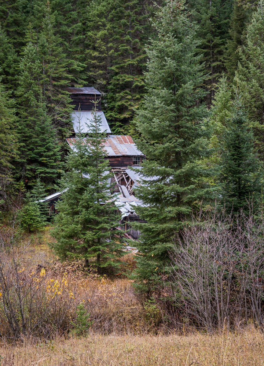 an abandoned gold mining stamp mill.