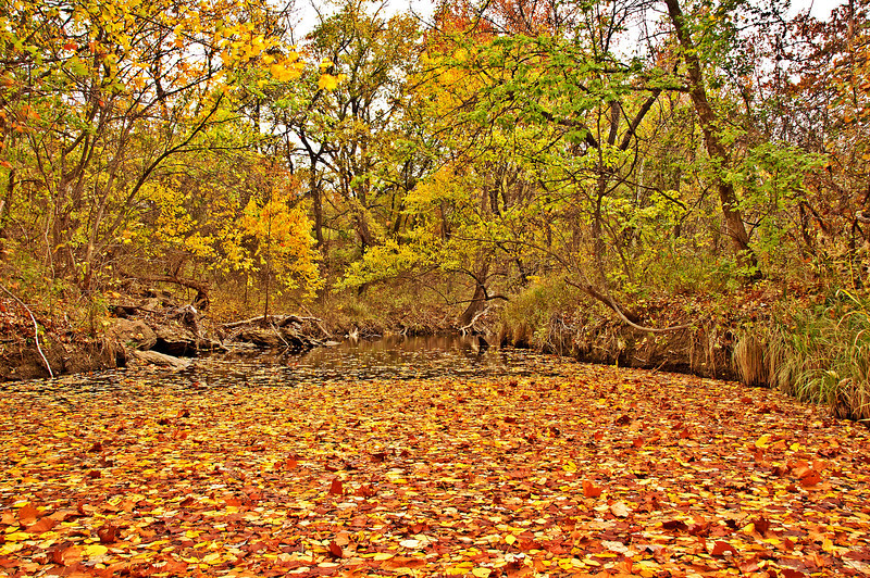 The creek at the low water bridge at Briarwood Ave. Durant