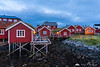 Red houses in Reine at dusk