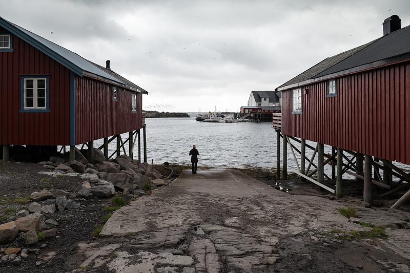 8-30-17239934Å lofoten