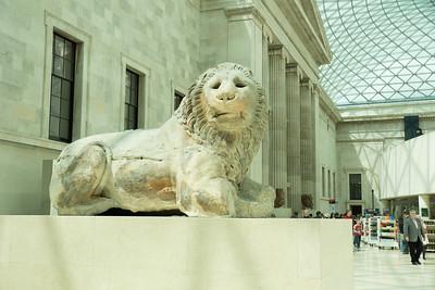 несколько тысяч лет этому льву. привезли из Египта. там вообще целые залы со стенами привезенные из Египта