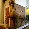 Winged bull, Ashurbanipal's Palace, Nimrod, Iraq, 883 B.C.