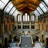 Natural History Museum, with Darwin's statue.