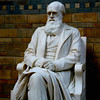 Darwin was moved up from the basement for his 200th birthday.