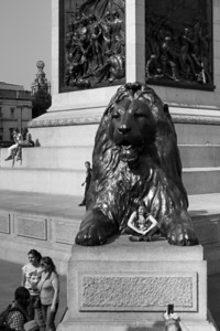 Posing On The Lion