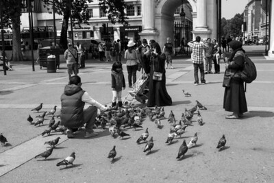 Feeding the Pigeons, Marble Arch