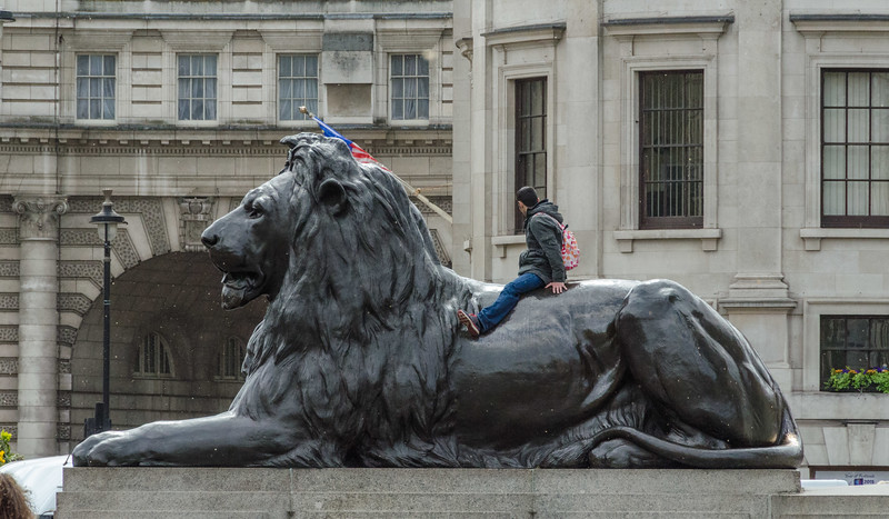 Lion at base of Nelson's Column