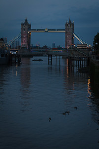 The Tower Bridge at Dusk With Geese