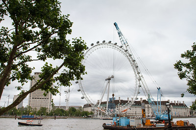 The London Eye From The Embankment