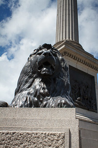Nelson's Column and Lion