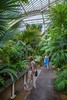 Inside the Orangerie