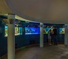 In the basement of the Orangerie are aquariums with examples of water plants
