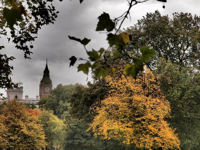 Big Ben through fall leaves.