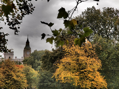 Big Ben through fall leaves.