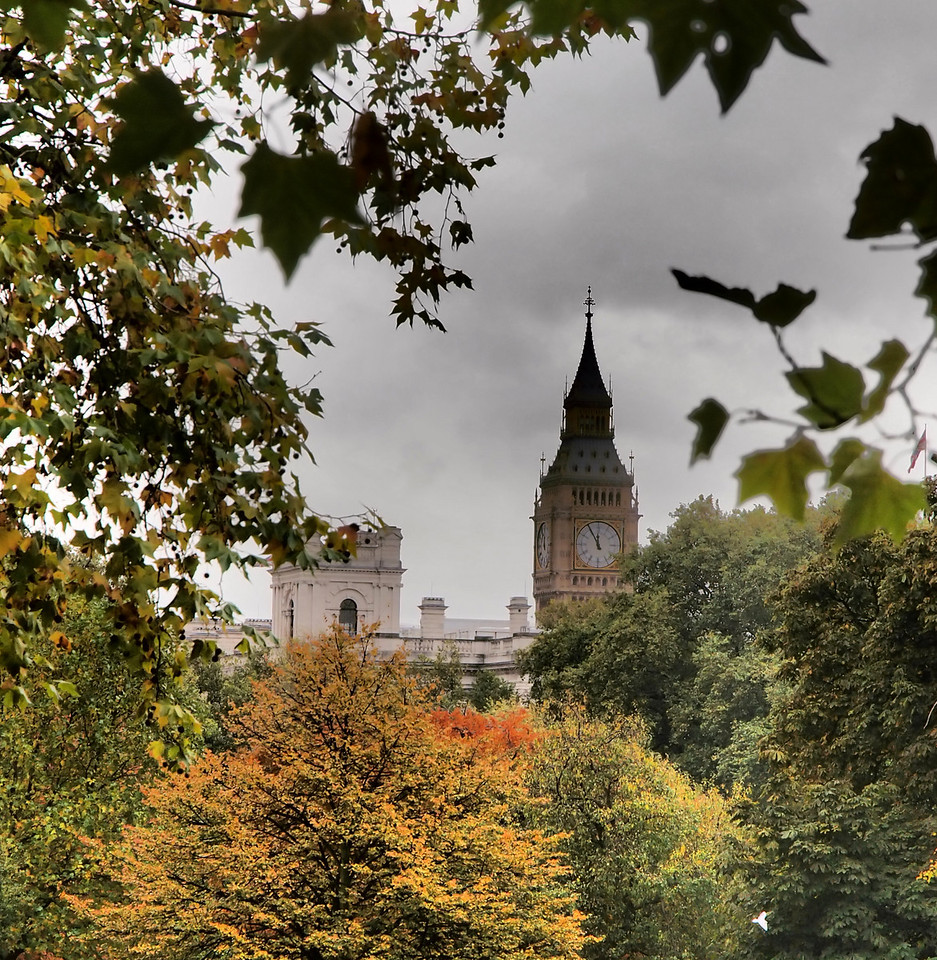 Big Ben with turning leaves near Buckingham Palace.