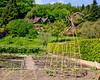 6046-chartwell Vine Trellis Country Cottage bg