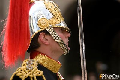 Queen's Horse Guard, London