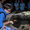 Sean playing with a starfish at the London Aquarium