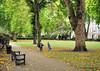 St. George's park